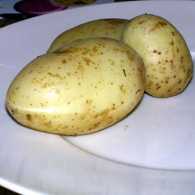 ziemniaki w mundurkach Gotowane ziemniaki w mundurkach z koprem